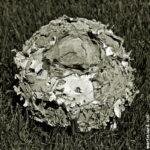 football tattered orkney martin scott laird