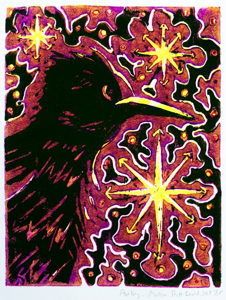 starling lino-cut reduction print by Martin Scott Laird