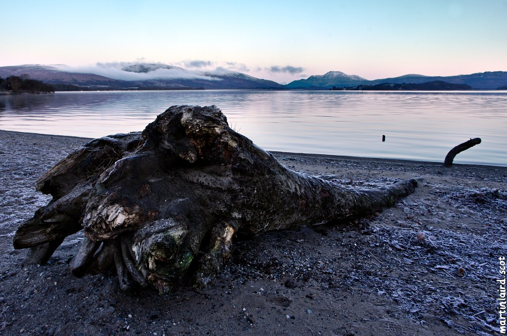 Loch Lomond with hills wreathed in clouds and a large washed-up log in the foreground, by Martin Scott Laird, 2017.