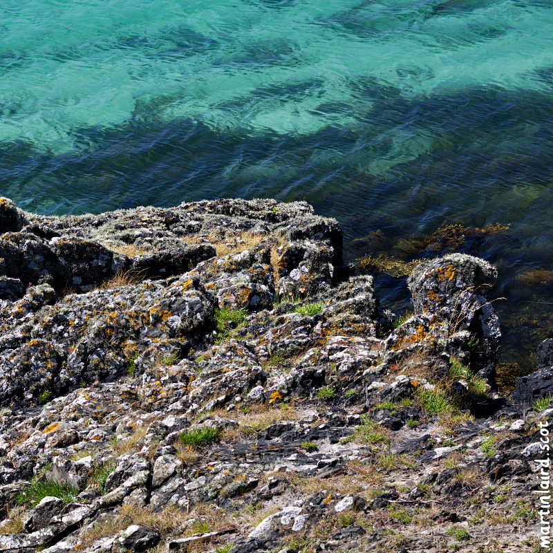 A square photo showing the textures of the rocks and lichen contrasted with the blue rippling sea and seaweed.