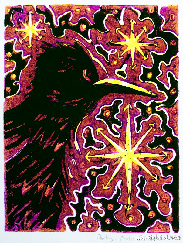 Lino-cut Starling with stars
